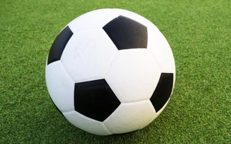 Afbeeldingsresultaat voor footgolf bal