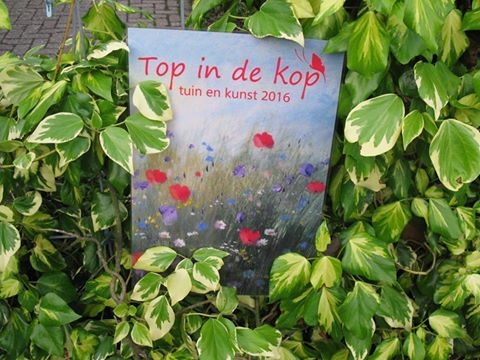 Top in de kop