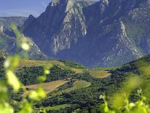 Languedoc.bmp